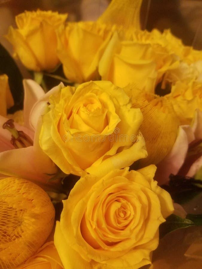 Желтый букет стоковое фото
