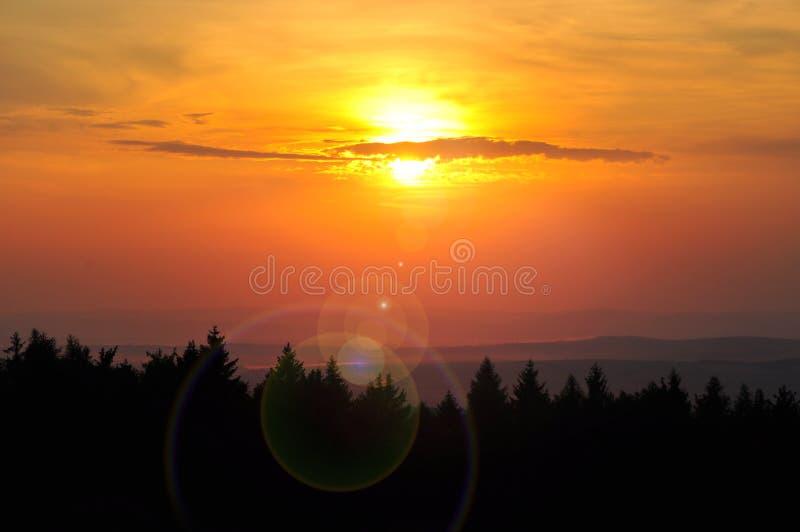 Желтый заход солнца лета стоковые изображения rf