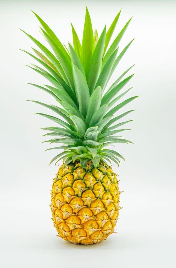 Желтый и зеленый ананас, плодоовощ, изолированный на белой предпосылке стоковое фото
