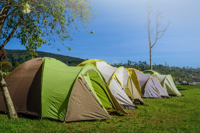Желтый и зеленый располагаясь лагерем шатер на траве около реки горы в mo стоковая фотография rf