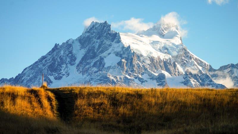 Желтый луг с горным пиком на походе Torres del Paine в Патагонии, Чили травы стоковые изображения
