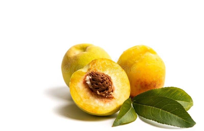Желтый персик на белой предпосылке стоковое фото
