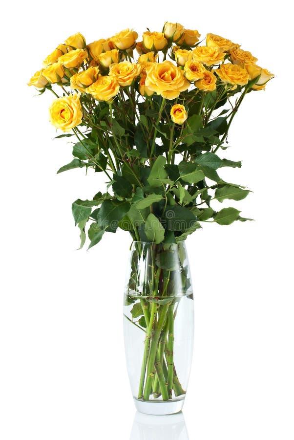 желтый цвет вазы shrub роз стоковые фотографии rf
