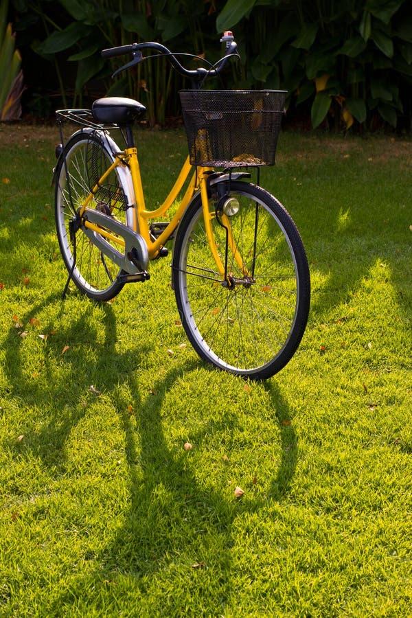 желтый цвет велосипеда стоковые изображения rf