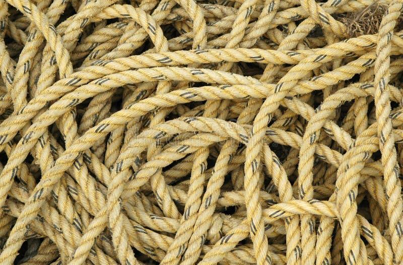 желтый цвет веревочки стоковые фото