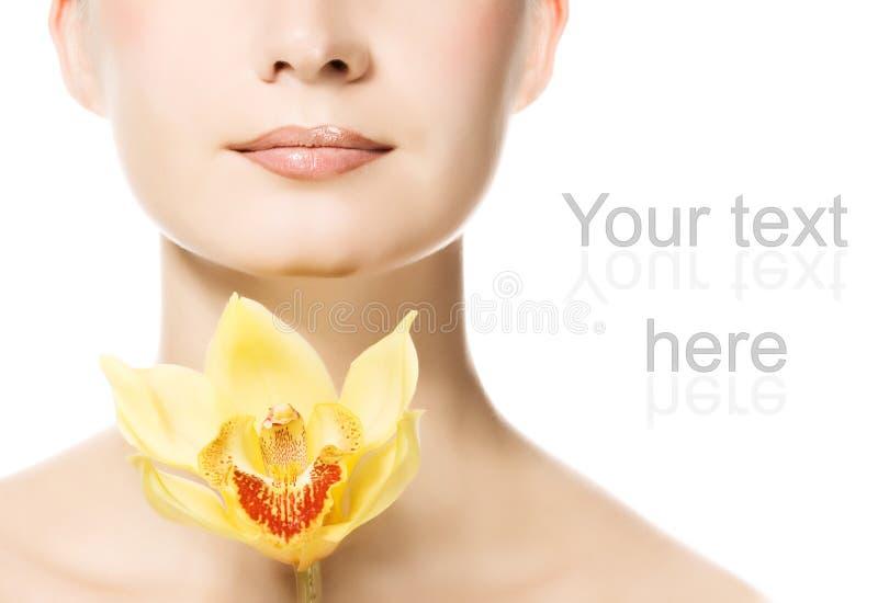желтый цвет женщины орхидеи стоковые фото
