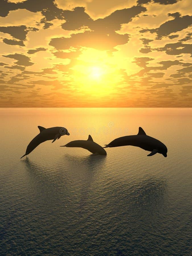желтый цвет захода солнца 2 дельфинов иллюстрация вектора