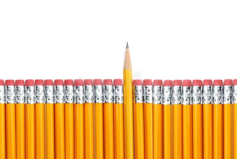 желтый цвет карандашей стоковое изображение
