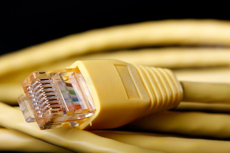 желтый цвет локальных сетей кабеля стоковая фотография rf