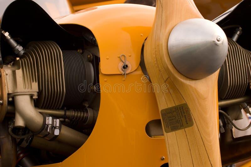 желтый цвет новичка стоковое фото