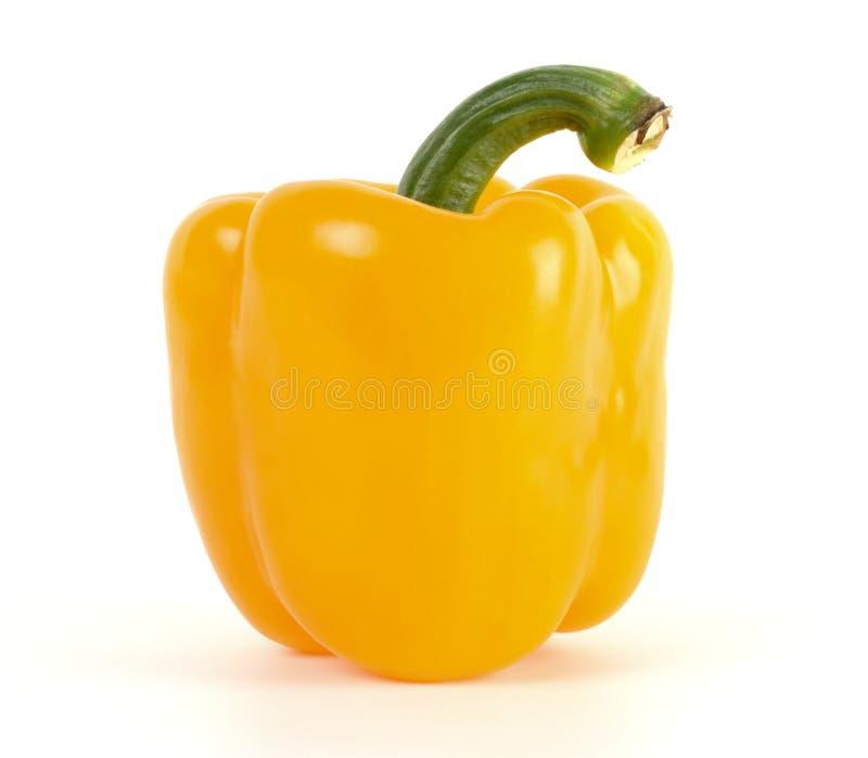 желтый цвет перца колокола одиночный стоковое изображение rf