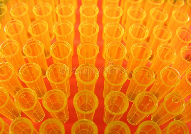 желтый цвет подсказок стоковые фотографии rf