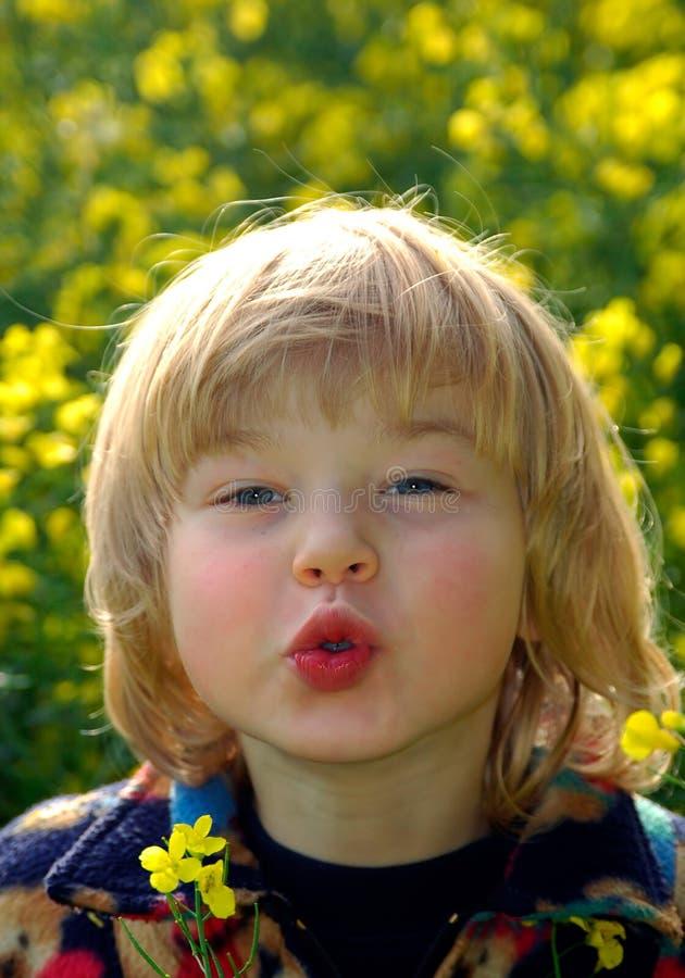 желтый цвет поля мальчика стоковые изображения rf