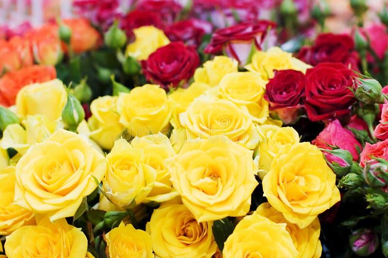 желтый цвет роз букета красный стоковая фотография rf