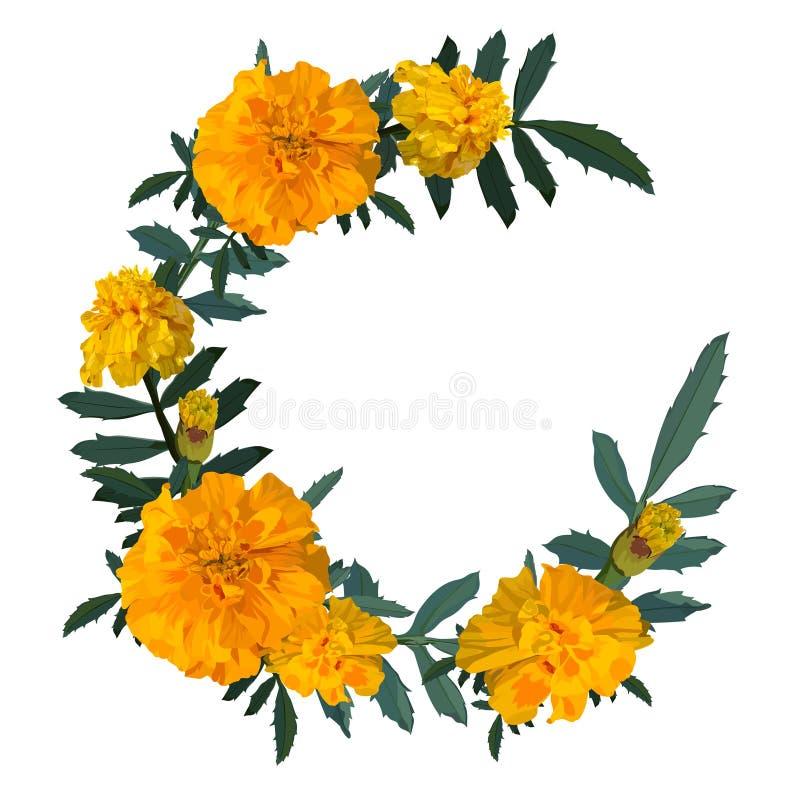 Желтый цвет с оранжевым ноготк цветка венок также вектор иллюстрации притяжки corel стоковое изображение