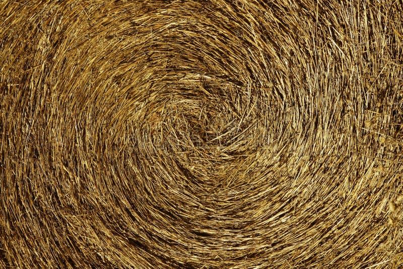 желтый цвет текстуры сторновки макроса bale предпосылки круглый стоковое изображение
