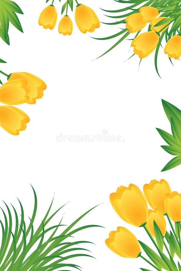 желтый цвет тюльпанов карточки иллюстрация вектора