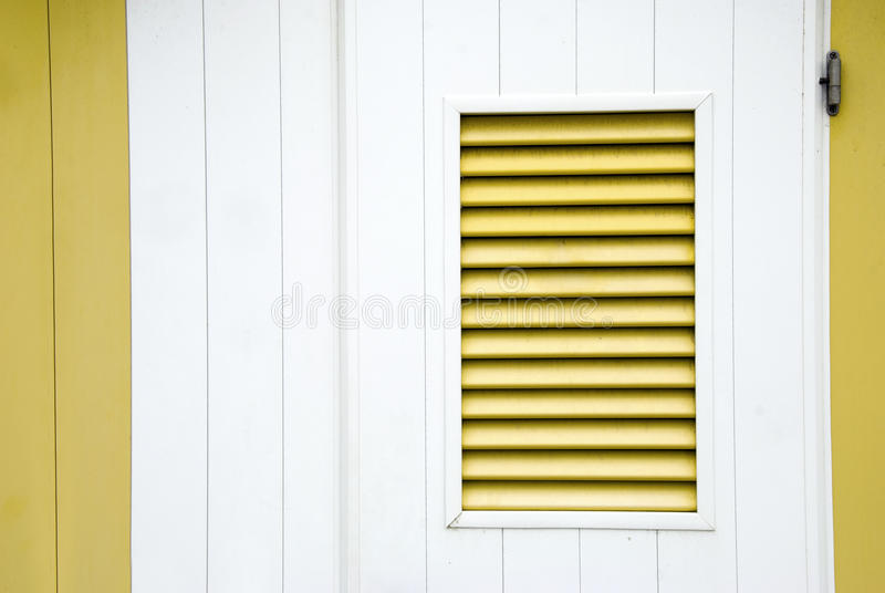 желтый цвет штарки стоковые фото