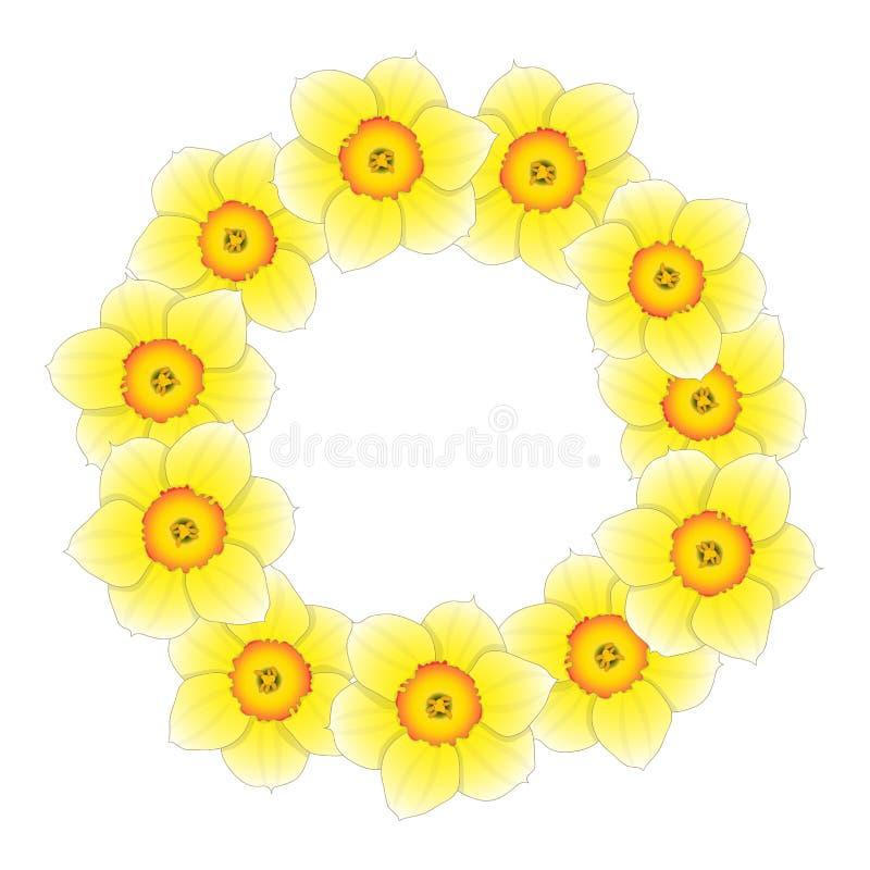 Желтый Daffodil - венок цветка Narcissus также вектор иллюстрации притяжки corel иллюстрация штока