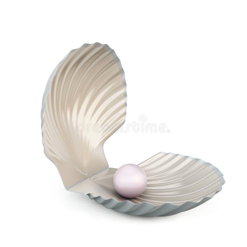 Жемчуг раковины на белой предпосылке иллюстрация штока