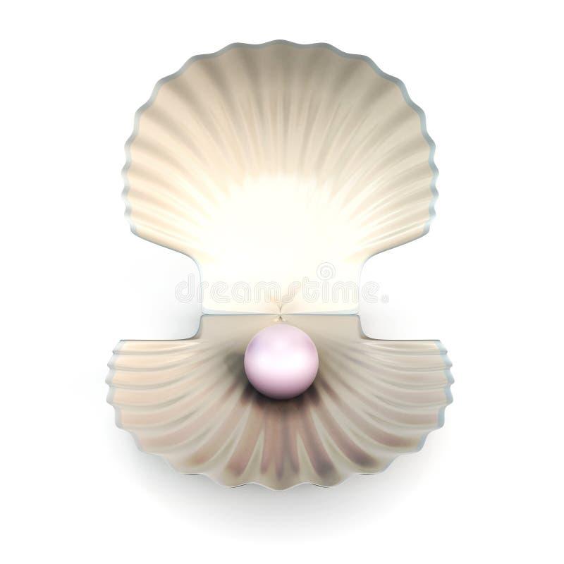 Жемчуг раковины на белой предпосылке иллюстрация вектора