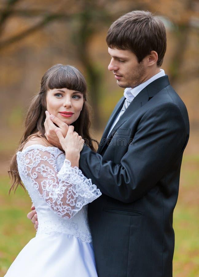 Жених и невеста брюнета, ландшафт стоковые фотографии rf