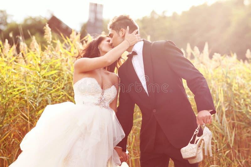 Жених и невеста на заходе солнца стоковые фотографии rf