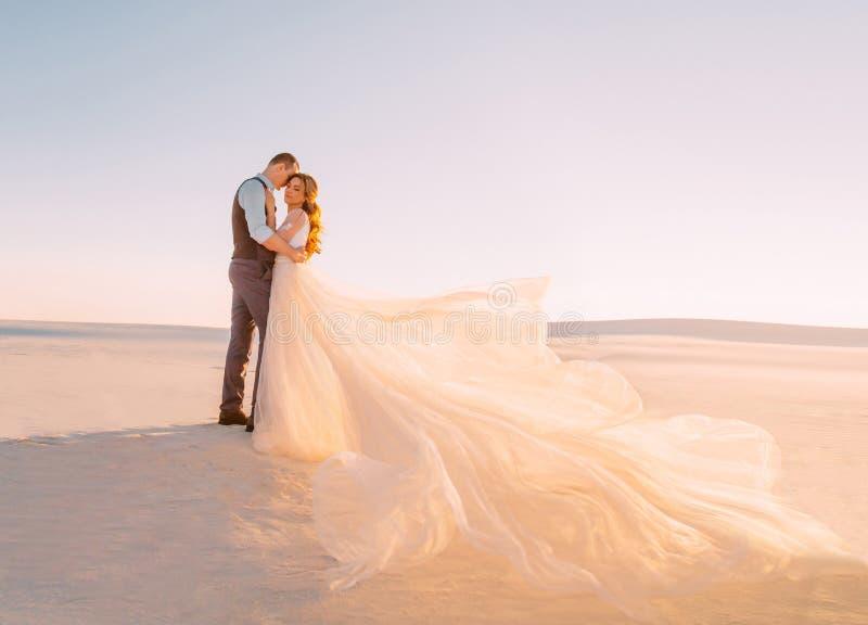 Жених и невеста обнимает в теплой солнечности на заходе солнца Красивый, длинный поезд дует в ветре Изящное искусство стоковое изображение rf