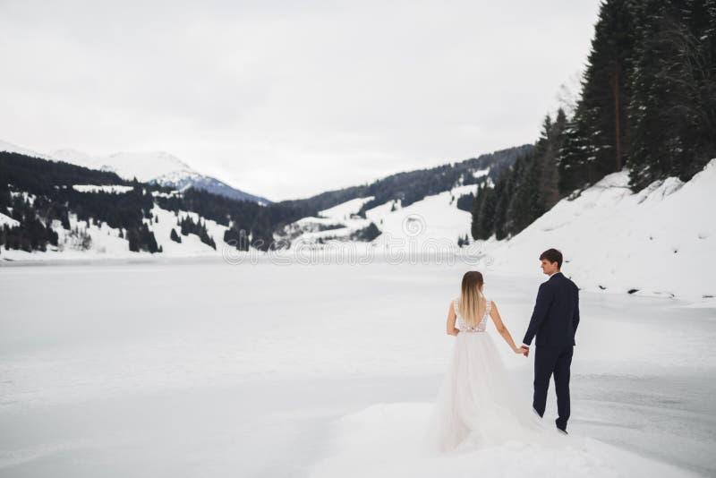 Жених и невеста пар свадьбы держа руки стоковое изображение rf