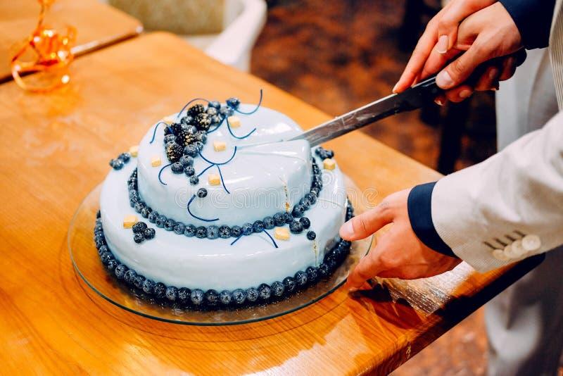 Жених и невеста режа их свадебный пирог голубики стоковые фотографии rf