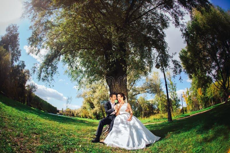 Жених и невеста с конфетами в руках стоковое фото