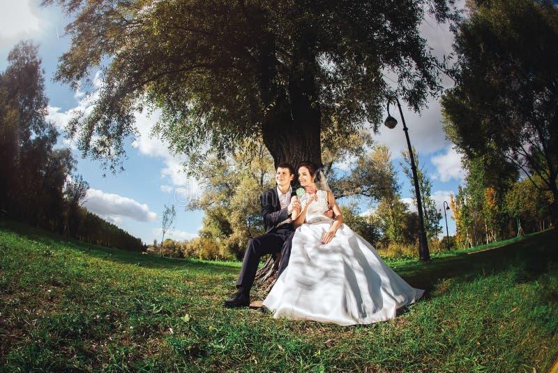 Жених и невеста с конфетами в руках стоковые изображения rf