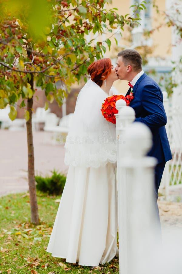 Жених и невеста целует в парке осени стоковое изображение