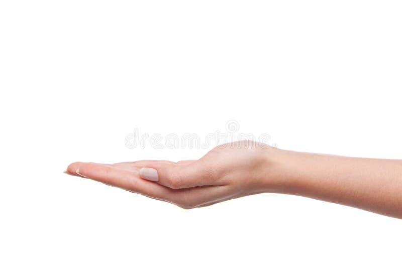 женская женщина удерживания руки стоковые изображения rf