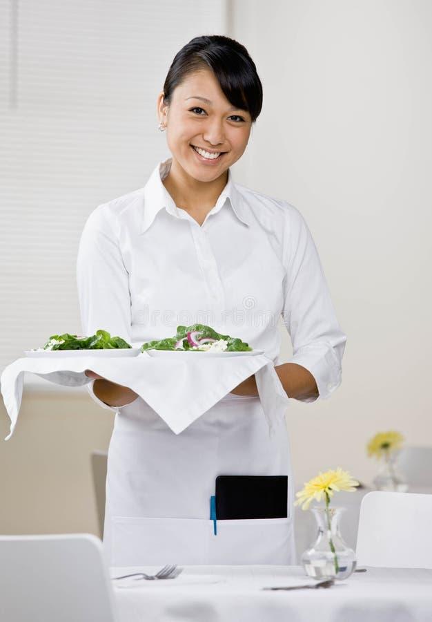 женская официантка стоковые фотографии rf