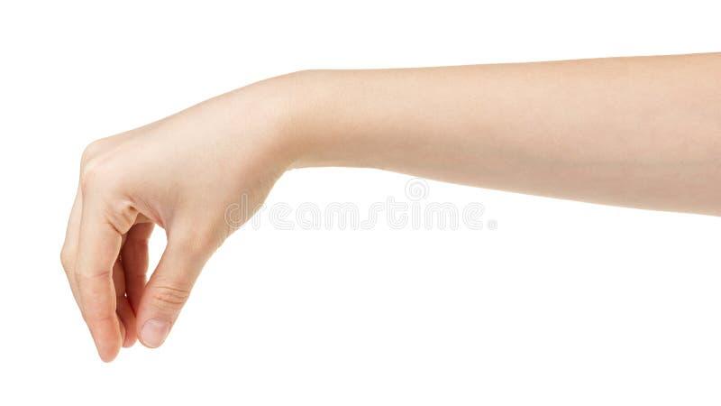 Женская предназначенная для подростков рука держа что-то от верхней части стоковое изображение rf