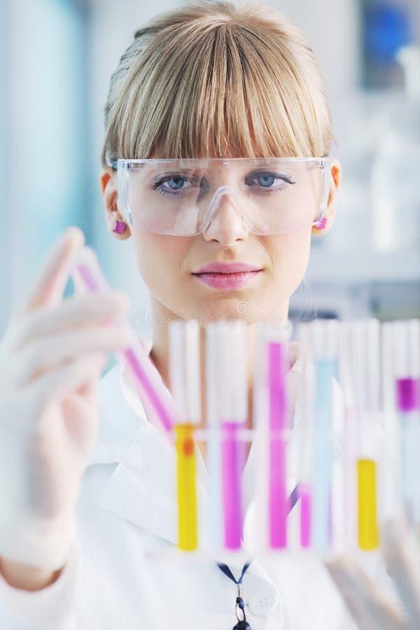 женская пробирка исследователя лаборатории удерживания вверх стоковые изображения