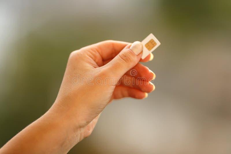 Женская рука держа белую карточку SIM стоковая фотография
