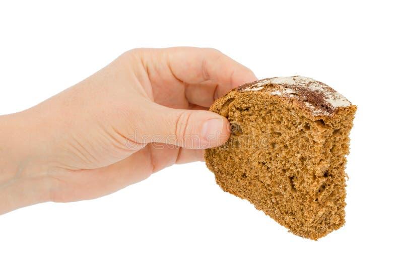 Женская рука держит кусок хлеба, изолированный на белой предпосылке стоковое изображение rf
