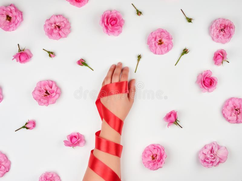 женская рука с ровной кожей в оболочке с красной лентой шелка стоковые изображения