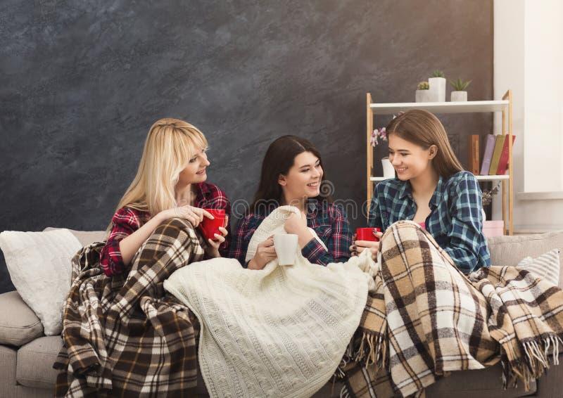 Женские друзья беседуя дома стоковое изображение