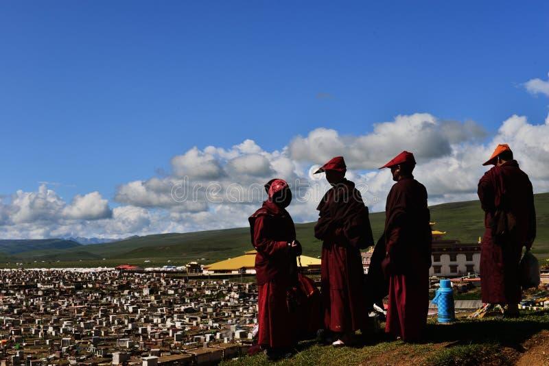 Женские монахи в Тибете стоковые фотографии rf