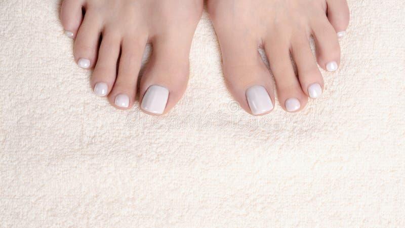 Женские пальцы ноги с белым pedicure на полотенце цвета слоновой кости Terry, концом вверх Босые ноги женщины стоковое изображение