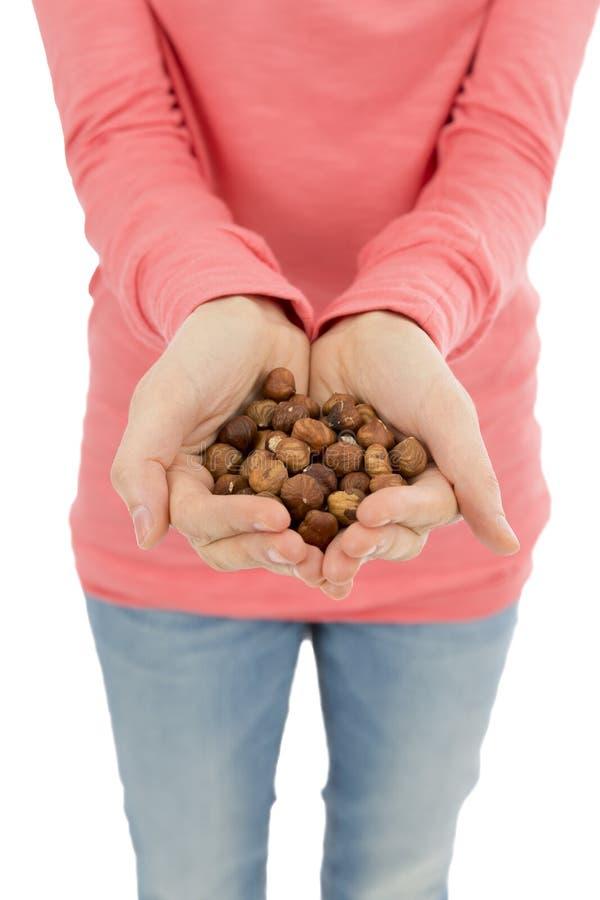 Женские руки вполне фундуков стоковое изображение rf