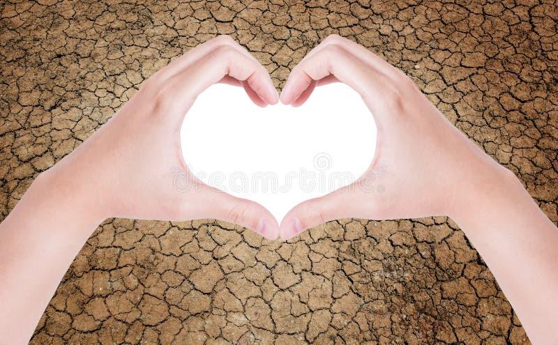 Женские руки в форме сердца стоковое изображение rf