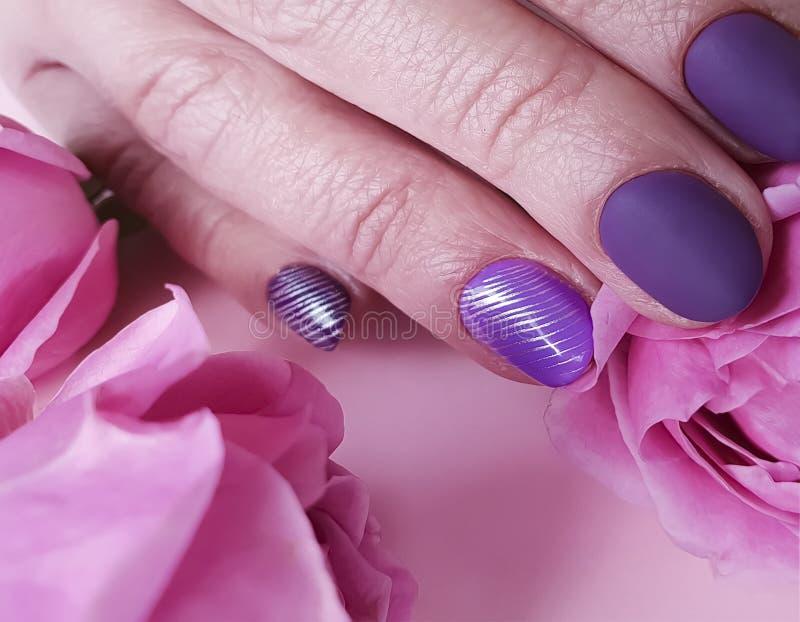 Женские руки делать фиолетовое чувствительное, цветок элегантности красоты предпосылки очарования украшения крупного плана наслаж стоковые фотографии rf