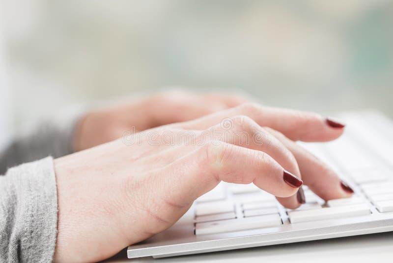 Женские руки или работник офиса женщины печатая на клавиатуре стоковые изображения