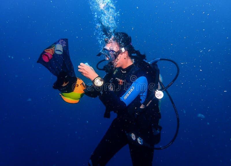 Женский водолаз акваланга под водой выполняя тренировку сноровки стоковые фотографии rf