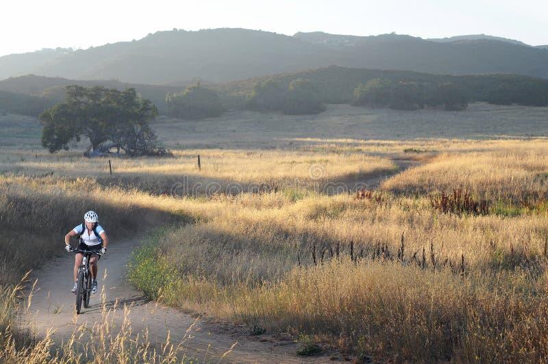 Женский всадник горного велосипеда на следе на заходе солнца стоковое фото rf