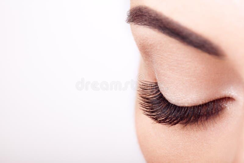 Женский глаз с весьма длинными ложными ресницами стоковые фото